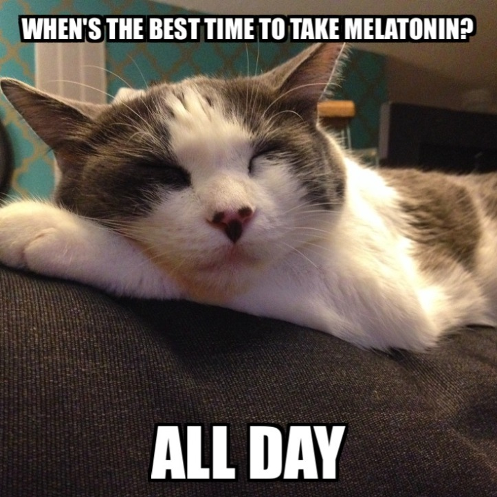 melatonin-all-day